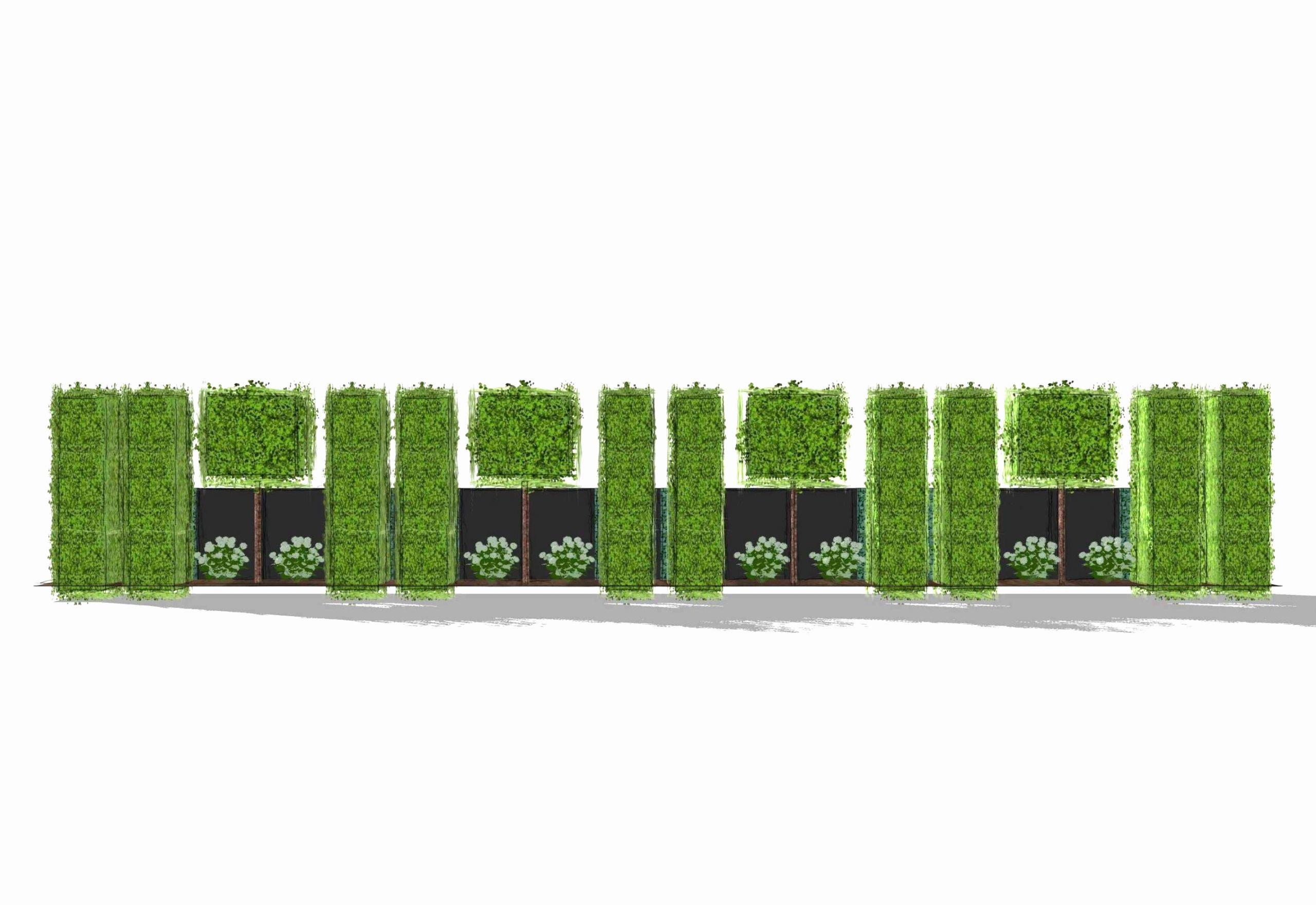 garden hedges luxury typen von moderner sichtschutz fur garten of garden hedges