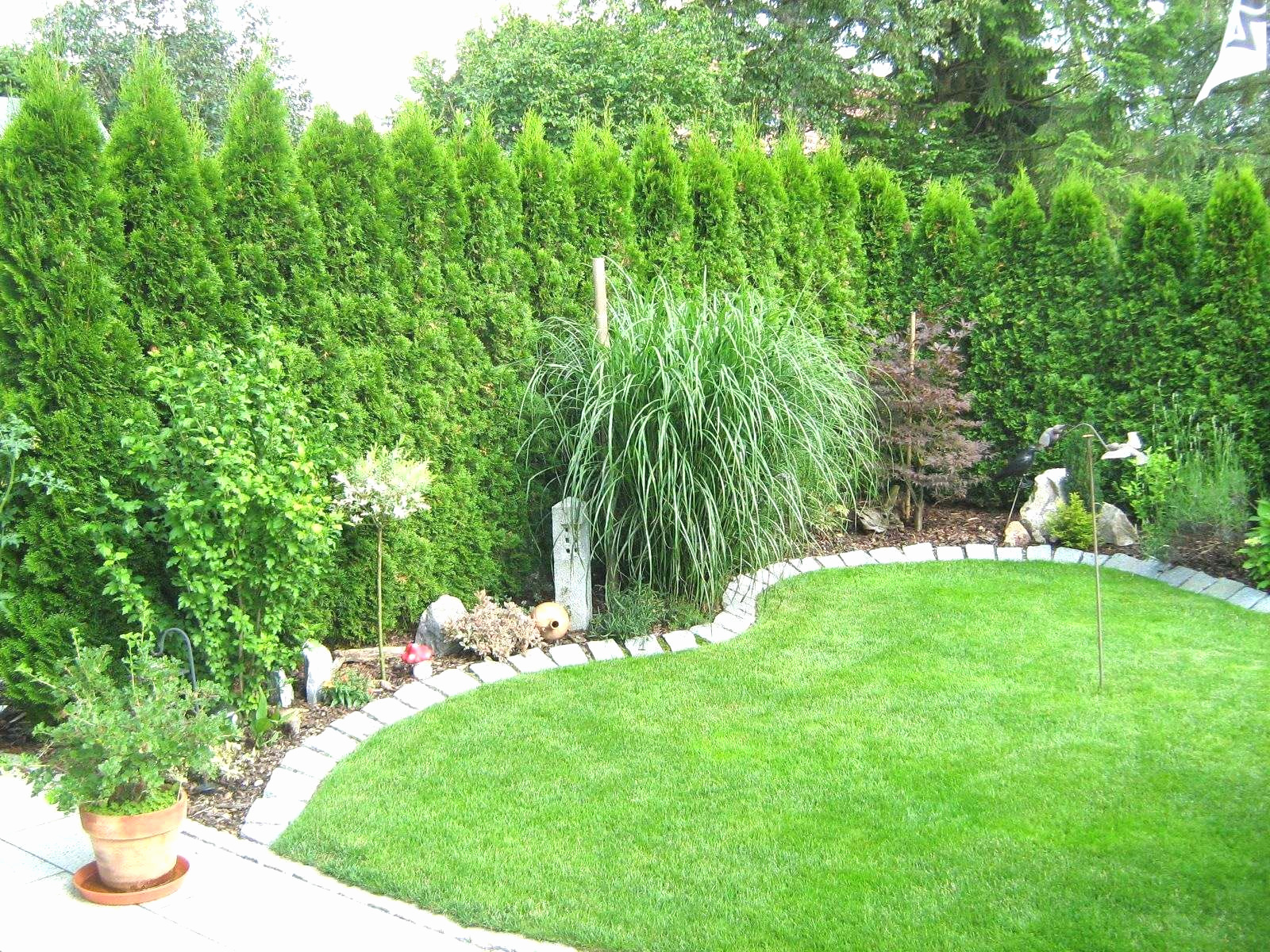 garden hedges beautiful garten tipps genial einen garten anlegen ehrfurchtig garten of garden hedges