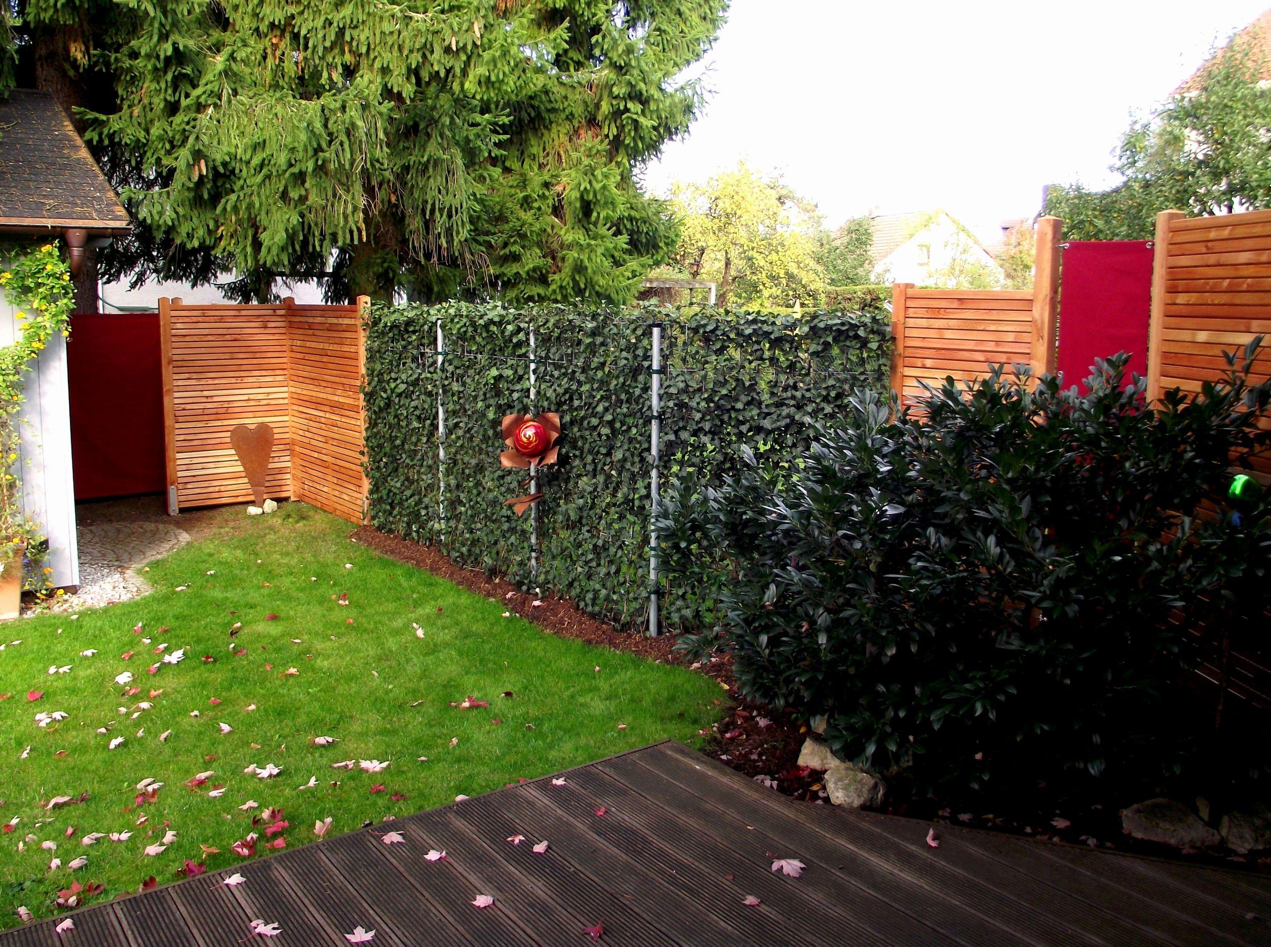 garden hedges luxury sichtschutz garten elegant beste schiebegardine blumenrispe i 0d zum of garden hedges