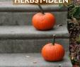 Gartenbank Dekorieren Elegant Die Schönsten Wohn Und Deko Ideen Für Den Herbst Herbst