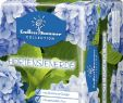 Gartenbedarf Onlineshop Best Of Endless Summer Hortensienerde Blau 20l