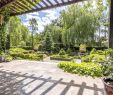 Gartenbedarf Onlineshop Inspirierend Gabionen Gartengestaltung Bilder — Temobardz Home Blog