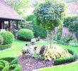 Gartenbeet Anlegen Schön 28 Lovely Garden In Back Yard