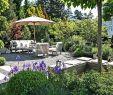 Gartenbeete Gestalten Bilder Best Of 53 Elegant Gartenbeete Gestalten Bilder