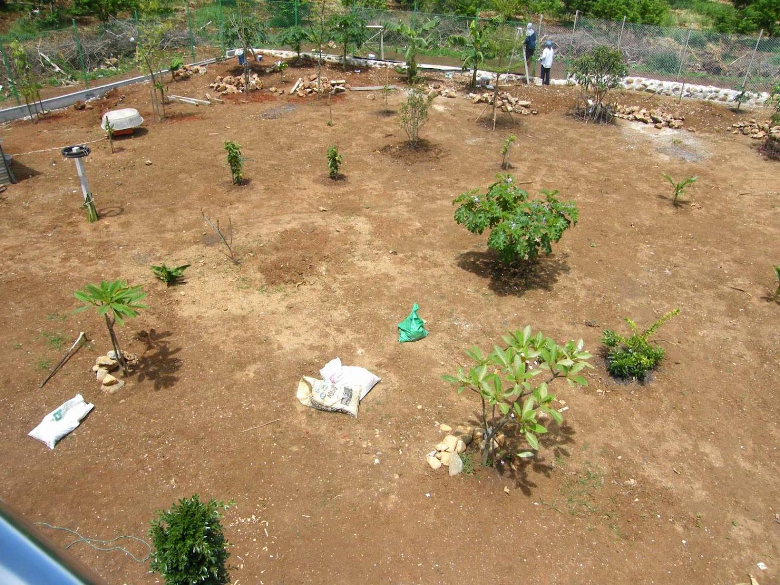 kies garten anlegen genial vorgarten gestalten modern inspirierend kiesgarten anlegen ideen kiesgarten anlegen ideen
