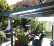 Gartenbilder Genial Bamboo Patio Shades Balkon Bambus 2019 Elegant