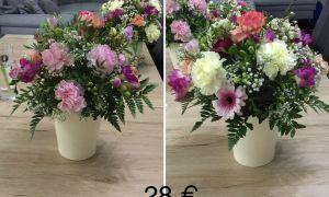 26 Einzigartig Gartenblumen