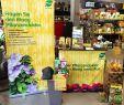 Gartencenter Frisch Хештег Pflanzendoktor у Твіттері