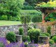 Gartendecko Genial Folgt Mir Garten Verliebt Für Tägliche Posts Mit tollen