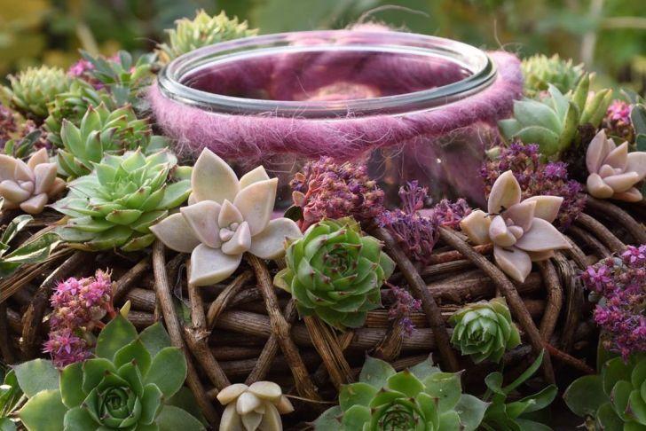 Gartendeco Genial Wurzisammlung Gardendecoration Gardeninspiration Garden