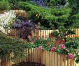 Gartendeko Auf Rechnung Frisch Palisaden 14 Cm Durchmesser