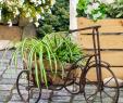 Gartendeko Aus Holz Und Metall Einzigartig Dieser Pflanzkorb Wird In Eurem Garten Zu Einem Echten