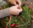 Gartendeko Basteln Naturmaterialien Neu Workshop Rückblick Winterdeko Aus Naturmaterialien Von