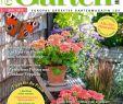 Gartendeko Eisen Rostig Elegant Mein Schner Garten Mai 2017 by Elena Petrova issuu
