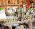 Gartendeko Eisen Rostig Genial Garten Pflanzen Frühling Scheune Dekoration Shabby Chic