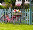 Gartendeko Fahrrad Best Of Gartendekoration Fahrrad · Ratgeber Haus & Garten
