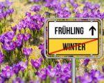 5 Inspirierend Gartendeko Frühling