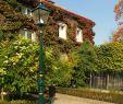 Gartendeko Herbst Luxus ▷ Zahradnidekorace Instagram Hashtag S & Videos • Pikdo