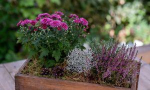 29 Elegant Gartendeko Herbst