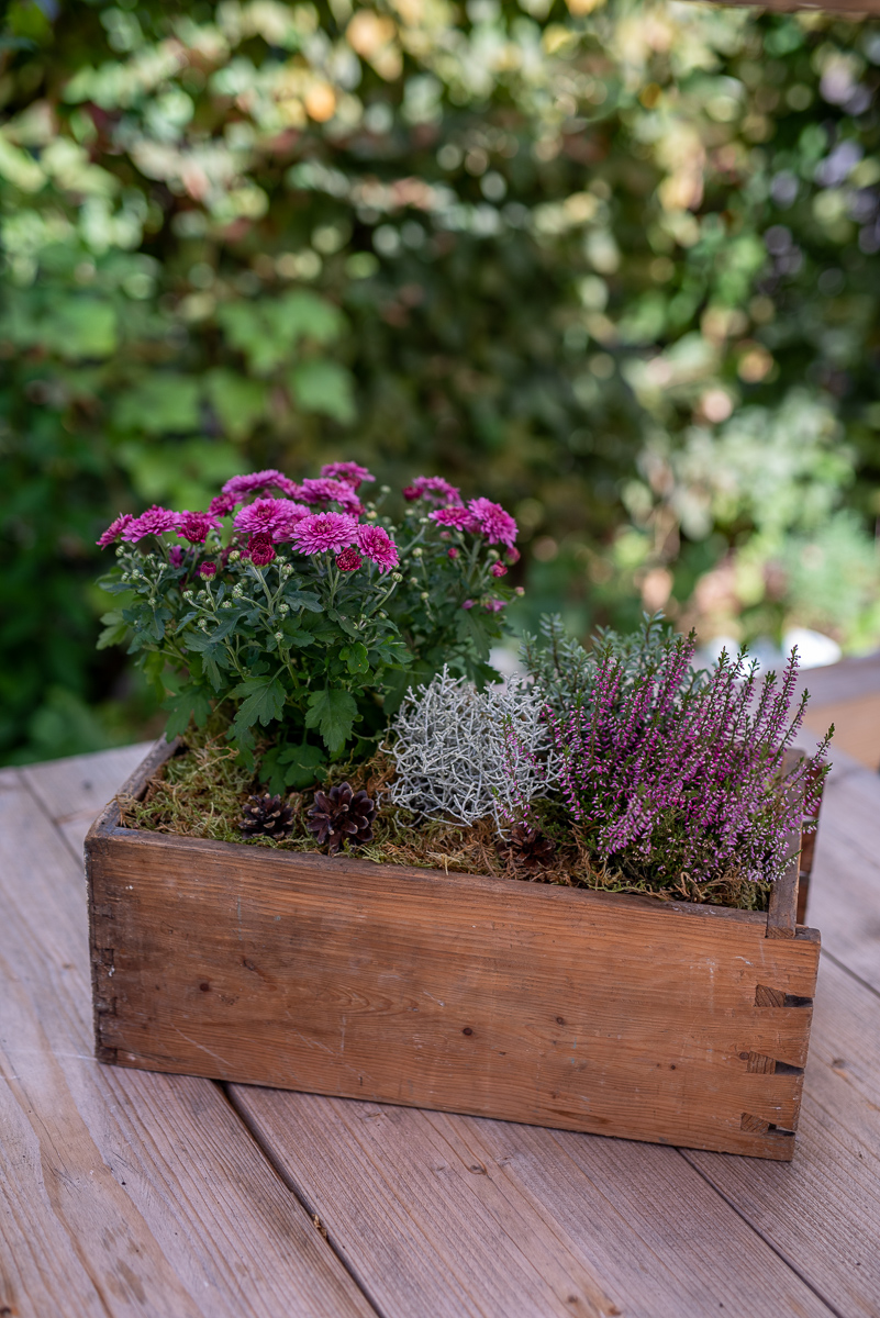 Gartendeko Herbst Neu Selbstgemachte Gartendeko Für Den Herbst Besthomedecors