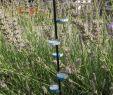 Gartendeko Holzbrett Luxus Insektentränke Mit Landemöglichkeit Bauen