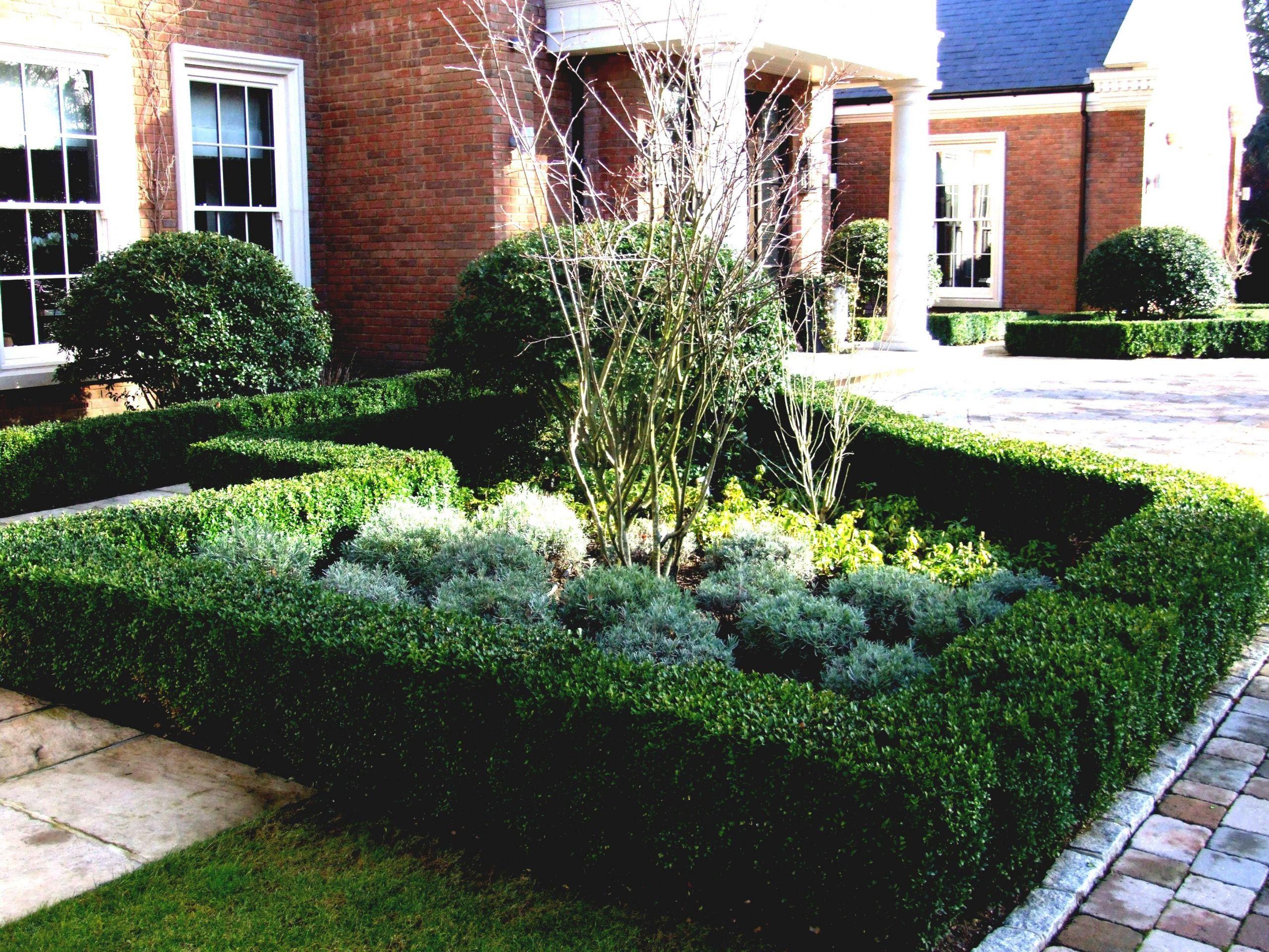 Gartendeko Ideen Best Of Ein Steingarten ist Gute Idee Für Die Steigung Wenn Das