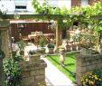 Gartendeko Ideen Selbst Gemacht Neu Feuerstelle Im Garten Bauen Das Beste Von Feuerstellen Im
