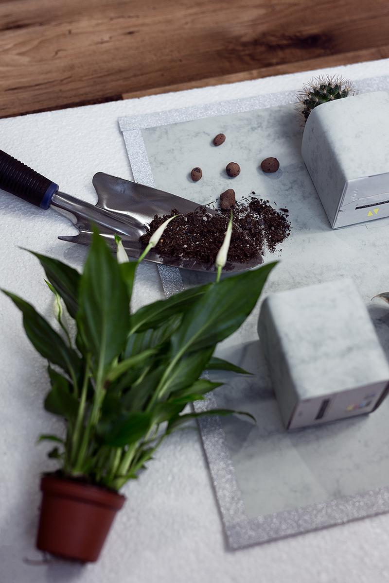 Vorbereitung Vertikaler Garten DIY Low Bud