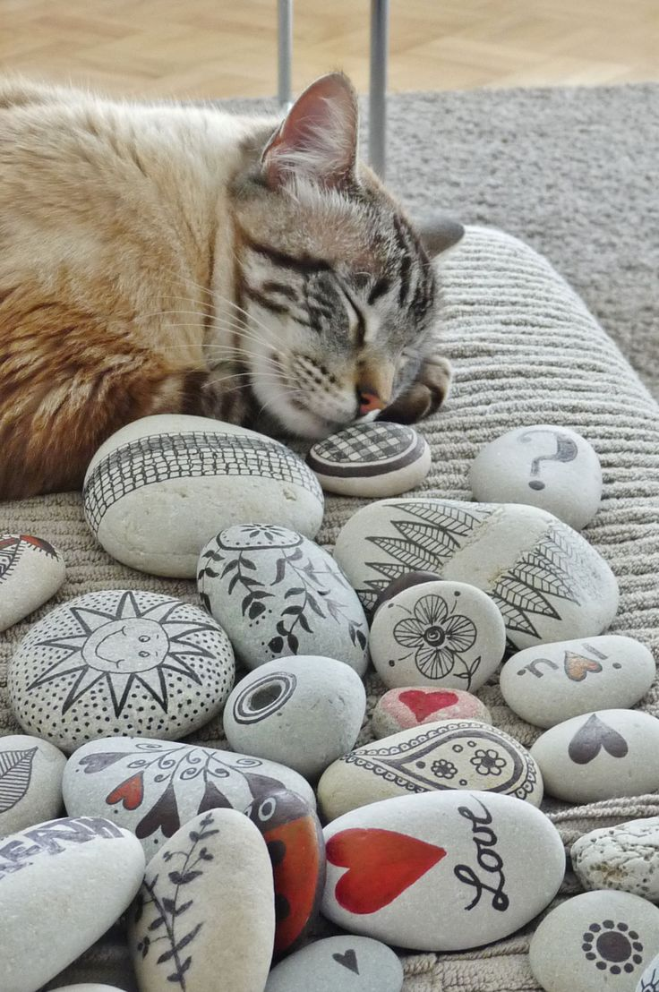 handmade ts ideas pebbles and cat pebbles from portugal hand painted by sabine ostermann