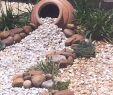 Gartendeko Mit Steinen Schön Pin On Gardening