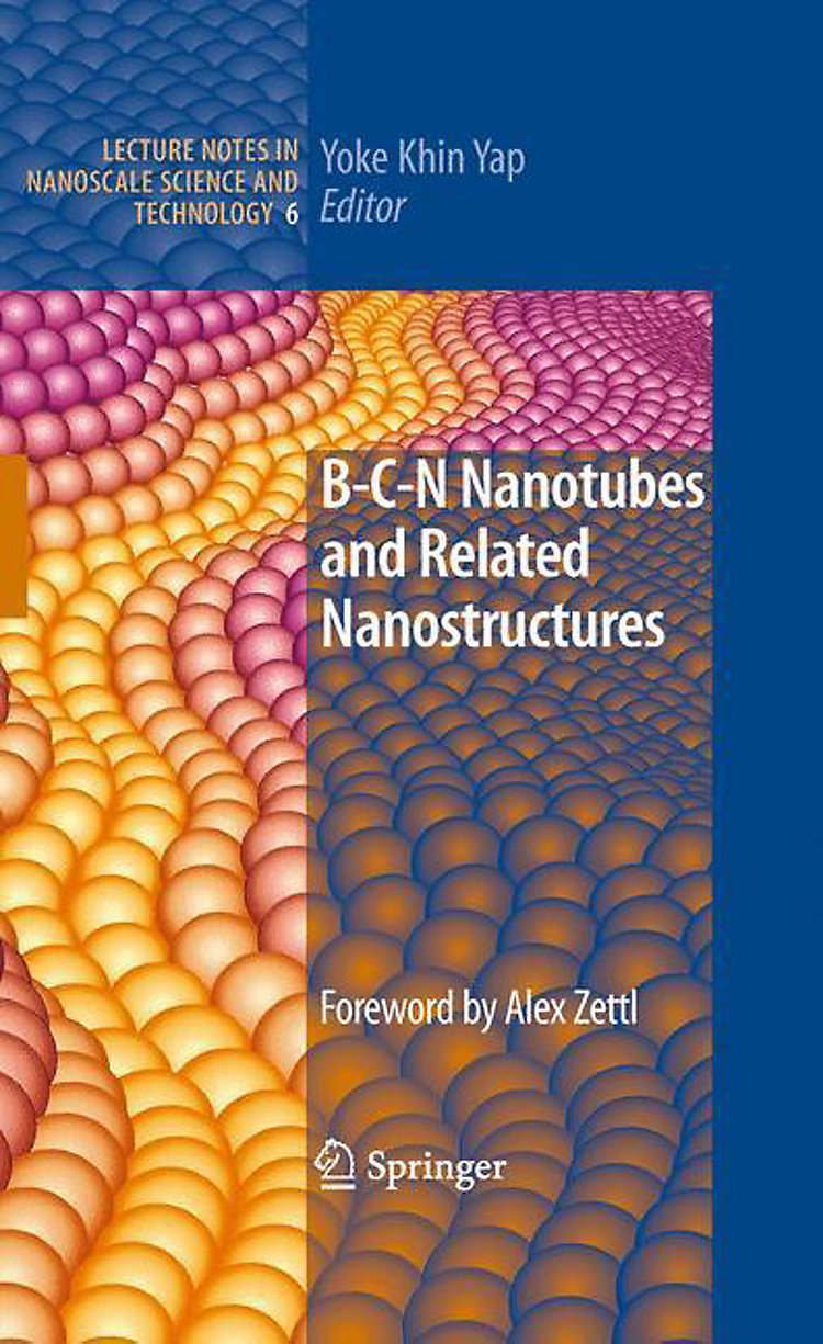 b c n nanotubes and nanostructures