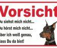 Gartendeko Schild Genial Schild Vorsicht Dobermann Wir Kaufen Nichts Schwarz Garten