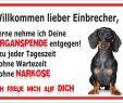Gartendeko Schild Inspirierend Gartendeko Vorsicht Kurzhaar Dackel Kampfhund Schild