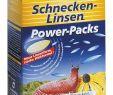 Gartendeko Schnecke Schön Etisso Schnecken Linsen 4x200g Power Packs