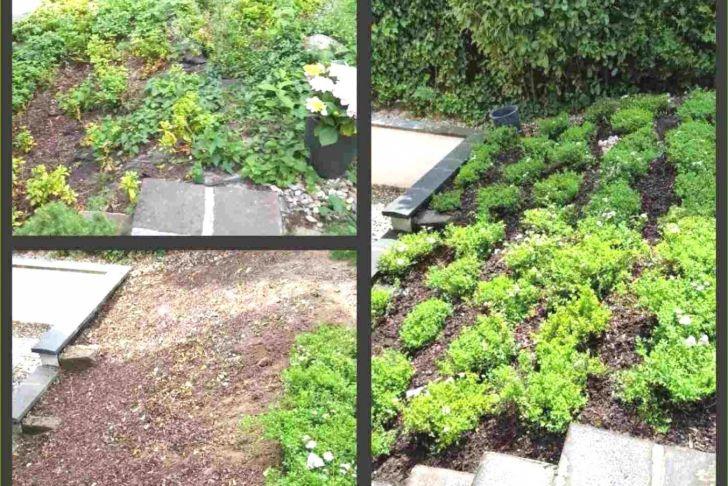 Gartendeko Selber Basteln Einzigartig Ausgefallene Gartendeko Selber Machen — Temobardz Home Blog