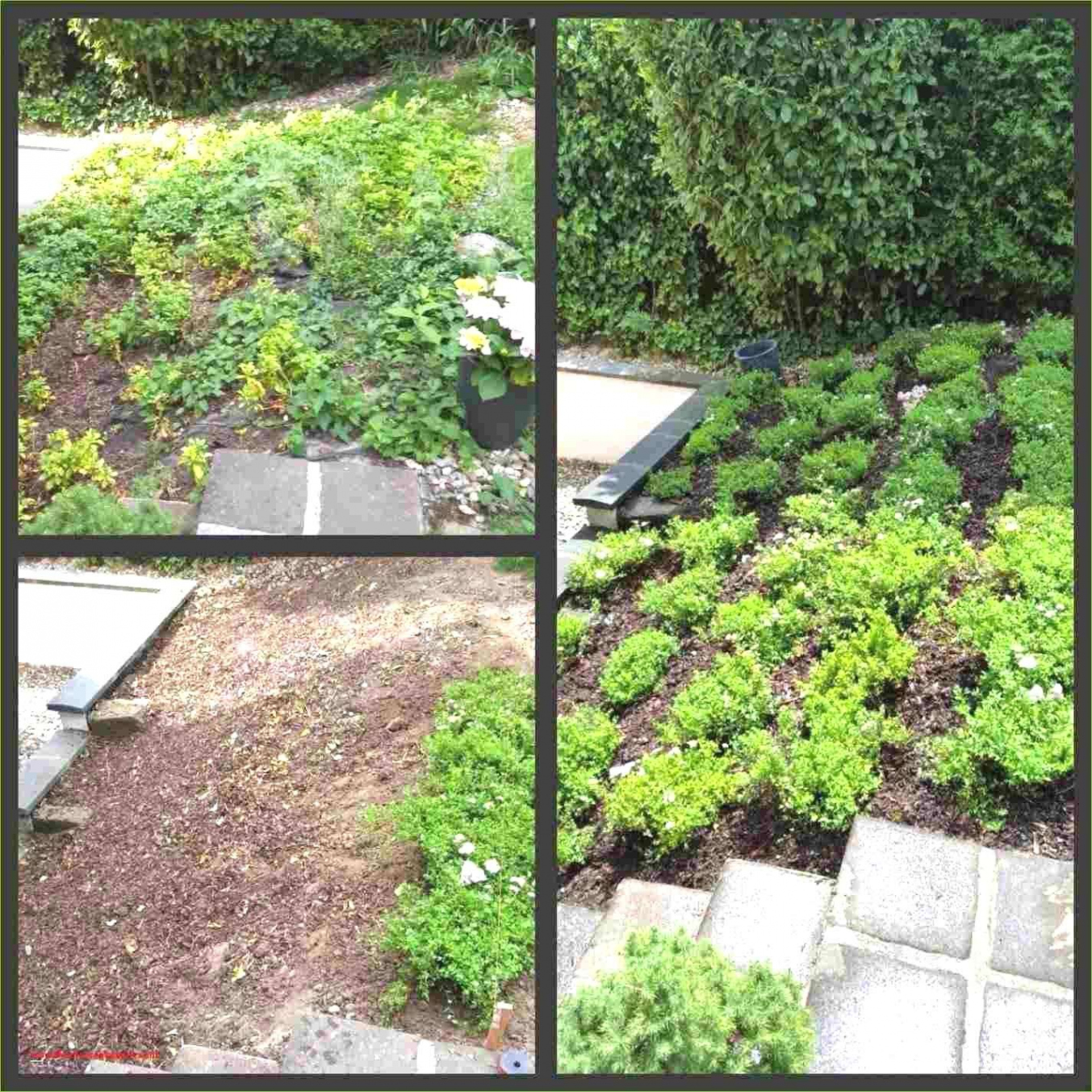 Gartendeko Selber Machen Anleitung Elegant Gartendeko Selber Machen — Temobardz Home Blog
