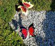 Gartendeko Stab Genial Tiffany Schmetterling Gartendeko Wohndeko Geschenk Für Den Garten Freunde Bekannte