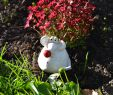 Gartendeko Stein Inspirierend Ceramic Garden Decoration Cute Mouse Pinky In 2019