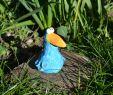 Gartendeko Vogel Genial Ceramic Garden Deco Bird Fiona In 2019 Knetbeton