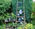 Gartendeko Zum Bepflanzen Neu Ein Garten Wie Aus Der Gartenzeitschrift