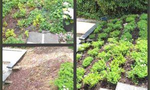 35 Einzigartig Gartendeko Zum Bepflanzen