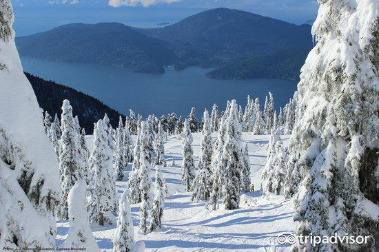 attraction review g d reviews m cypress mountain west vancouver british columbia