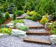 Gartendekoration Günstig Best Of Eversonpoe Page 171 Of 594 Garten Ideen