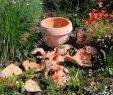 Gartendekoration Schön Broken Pot Garden Stock S & Broken Pot Garden Stock