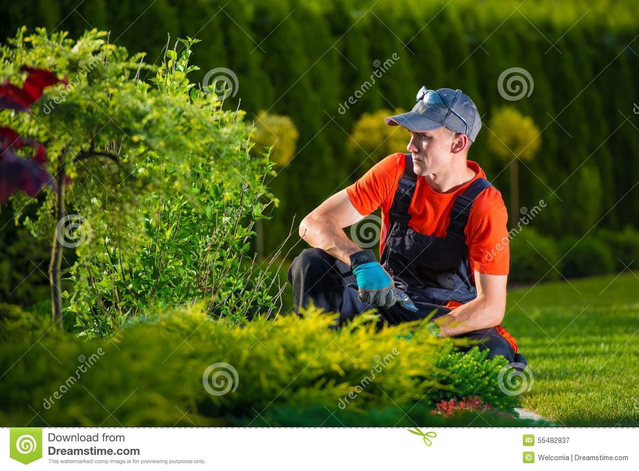 Gartendesigner Schön Kreativer Gartendesigner Stockbild Bild Von Beruf