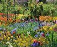 Gartenecke Gestalten Best Of atemberaubende Pool Designs Für Ihren Garten – Spezialist