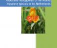 Gartenforum Luxus Pdf Risks and Management Of Non Native Impatiens Species In