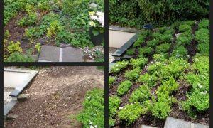 21 Inspirierend Gartengestaltung Am Hang
