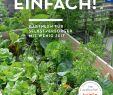 Gartengestaltung Beete Inspirierend Es Geht Auch Einfach