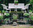 Gartengestaltung Bilder Kleiner Garten Best Of Wasser Im Kleinen Garten